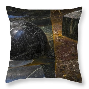 Throw Pillow featuring the photograph Ball And Plant by Glenn DiPaola