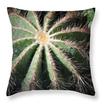 Ball Cactus Throw Pillow by Beth Williams