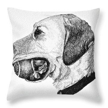 Ball Collector Throw Pillow by Susan Herber