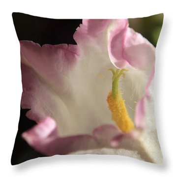 Balloon Flower Throw Pillow by Kenny Glotfelty