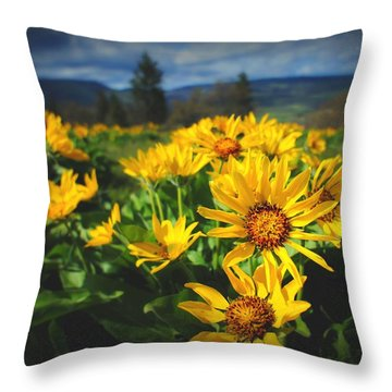 Balsamroot Of The Gorge Throw Pillow