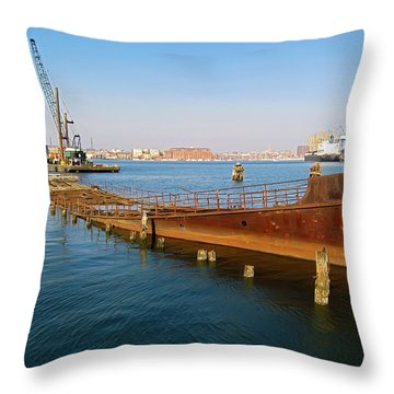 Throw Pillow featuring the photograph Baltimore Museum Of Industry by Brian Wallace