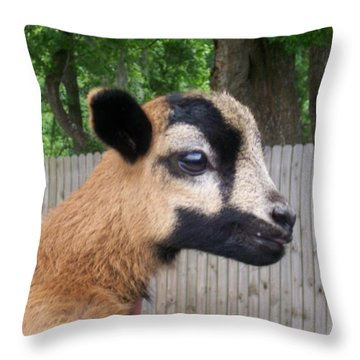 Throw Pillow featuring the photograph Bambi by Belinda Lee