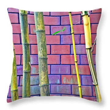 Bamboo And Brick Throw Pillow