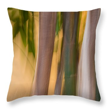Bamboo Throw Pillow by Beverly Parks