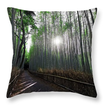 Bamboo Forest Path Of Kyoto Throw Pillow by Daniel Hagerman