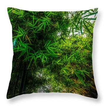 bamboo III - green Throw Pillow by Hannes Cmarits