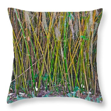 Throw Pillow featuring the photograph Bamboo by Lorna Maza