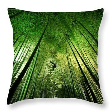 Zen Garden Throw Pillows