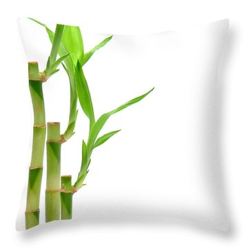 Bamboo Stems In Black Vase Throw Pillow by Olivier Le Queinec