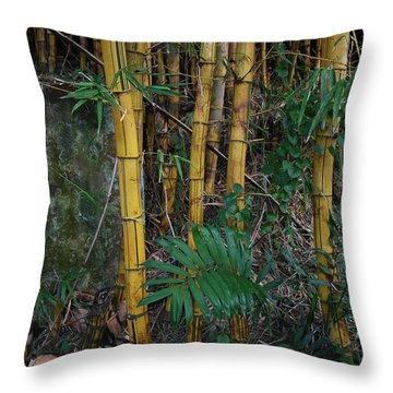 Bambu Throw Pillow