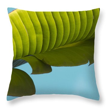 Banana Leaf And Maui Sky Throw Pillow by Sharon Mau