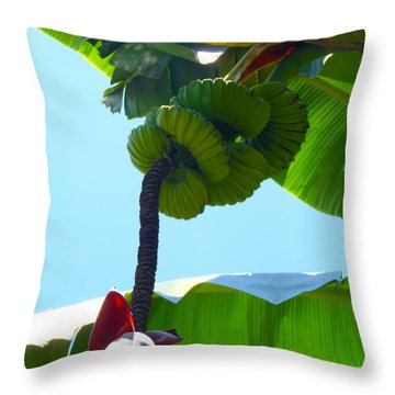 Banana Stalk Throw Pillow by Carey Chen