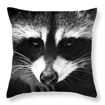 Bandit Throw Pillow