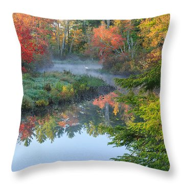Bantam River Autumn Throw Pillow