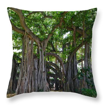 Banyan Tree At Honolulu Zoo Throw Pillow by Michele Myers