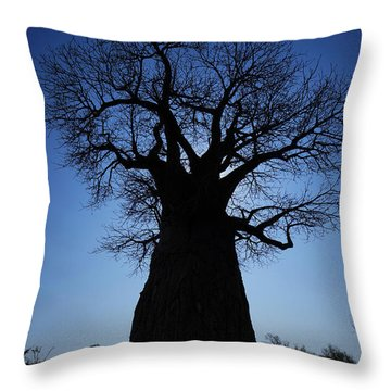 Baobab In The Okavango Delta Botswana Throw Pillow