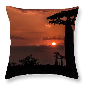 Baobab Sunrise Throw Pillow