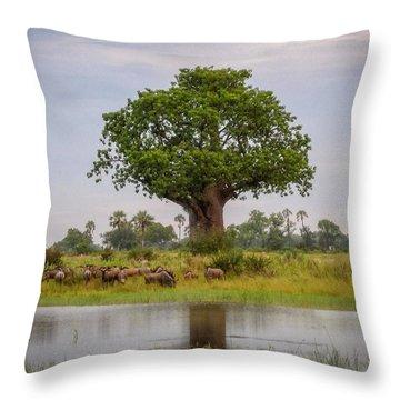 Baobao Tree Throw Pillow