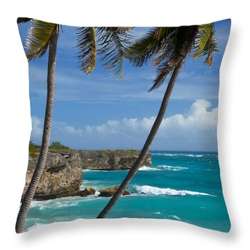 Barbados Throw Pillow by Brian Jannsen
