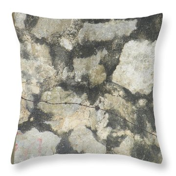 Barbed And Dangerous  Throw Pillow by Brian Boyle