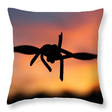 Throw Pillow featuring the photograph Barbed Silhouette by Vicki Spindler
