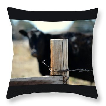 Throw Pillow featuring the photograph Barbed Wire Around by Clarice  Lakota