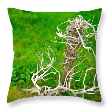 Barbs And Briers Throw Pillow