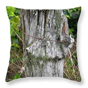 Barbwire Crown Throw Pillow by Nick Kirby