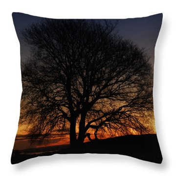 Bare And Dark Throw Pillow