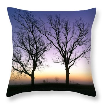 Bare Bones Throw Pillow by Tim Stanley