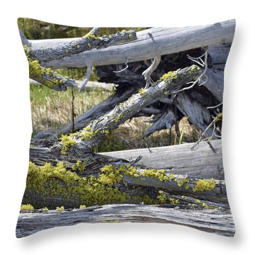 Bare Logs And Lichen In Yellowstone Throw Pillow by Bruce Gourley