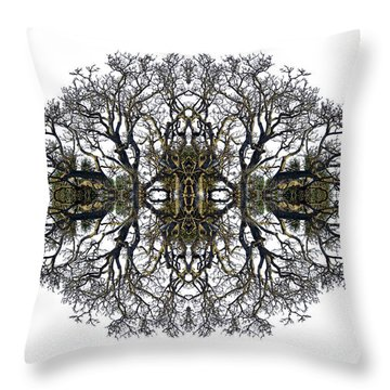 Bare Tree Throw Pillow by Debra and Dave Vanderlaan