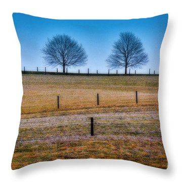 Bare Trees And Fence Posts Throw Pillow