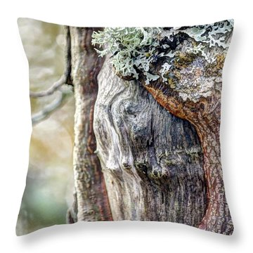 Bark And Bokeh Throw Pillow by Chris Anderson