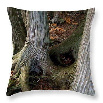Barky Barky Trees Throw Pillow by Michelle Calkins