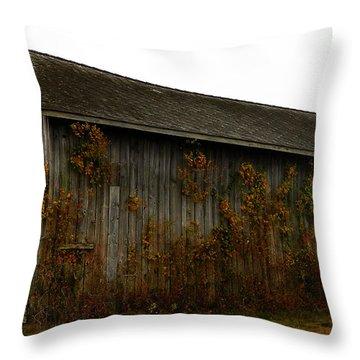 Barn 2 Throw Pillow