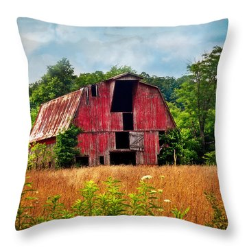 Barn 23 Throw Pillow by Marty Koch