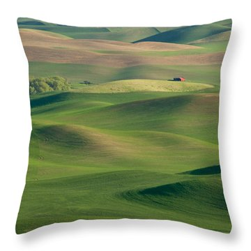 Throw Pillow featuring the photograph Barn Among The Contours by Mary Lee Dereske