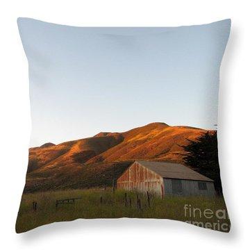 Barn At Garrapata State Park Throw Pillow