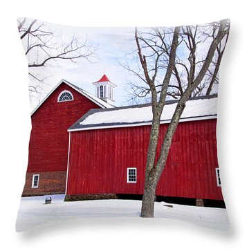 Barn At Tinicum Park Throw Pillow