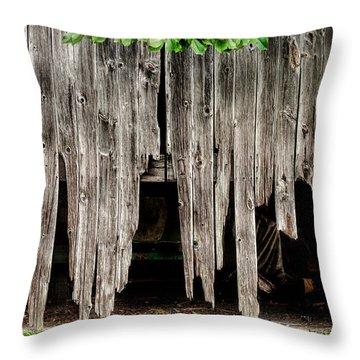 Barn Boards - Rustic Decor Throw Pillow by Gary Heller