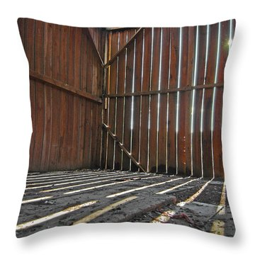 Throw Pillow featuring the photograph Barn Bones I by Jani Freimann