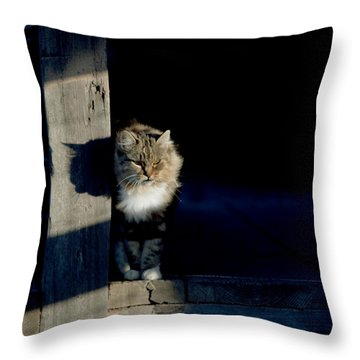 Barn Cat Throw Pillow by Art Block Collections