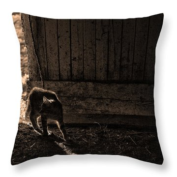 Barn Cat Throw Pillow by Theresa Tahara