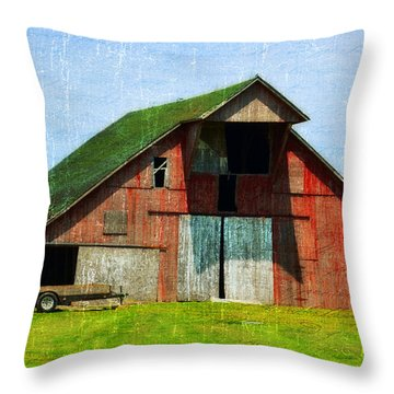 Barn - Central Illinois - Luther Fine Art Throw Pillow by Luther Fine Art