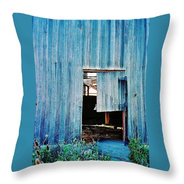 Throw Pillow featuring the photograph Barn Door... Monroe Co. Michigan by Daniel Thompson
