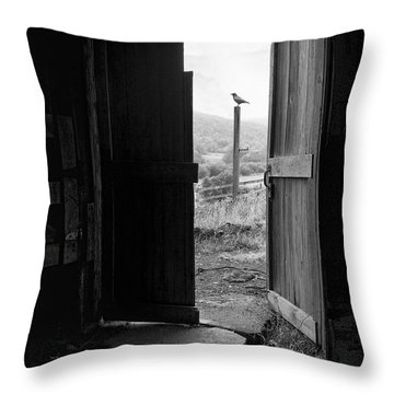 Barn Door - View From Within - Old Barn Picture Throw Pillow