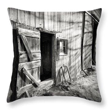 Barn Doors Throw Pillow