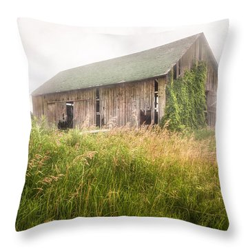 Throw Pillow featuring the photograph Barn In A Misty Field by Gary Heller